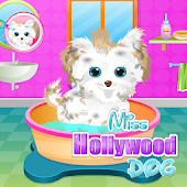 Miss Hollywood Dog Care