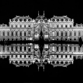 Belvedere by Christoph Reiter - Buildings & Architecture Public & Historical ( palace, castle, night, long exposure, mirroring, water,  )