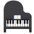 Piano For Professional