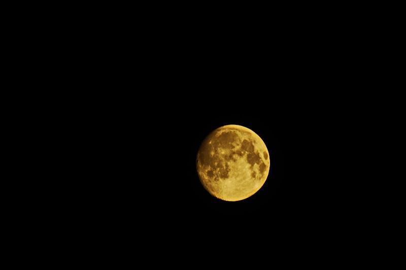 maxy luna  di jovi55