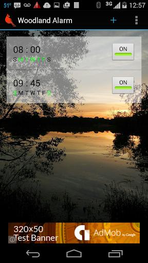 Woodland Alarm Clock Beta