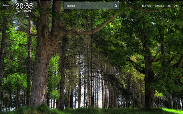 Forest Wallpapers NewTab Theme