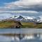 Torres del Paine #2adjustcoldautotoneresize2000denoisemore.jpg
