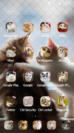 玩免費漫畫APP|下載Lovely Cat couple theme app不用錢|硬是要APP