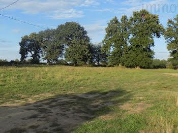 terrain à Grand-Fougeray (35)