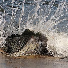 Splash by Gaylord Mink - Nature Up Close Water ( rock, water, splash, wave )