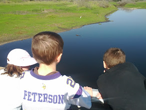 Photo: That's a gator they're looking at.