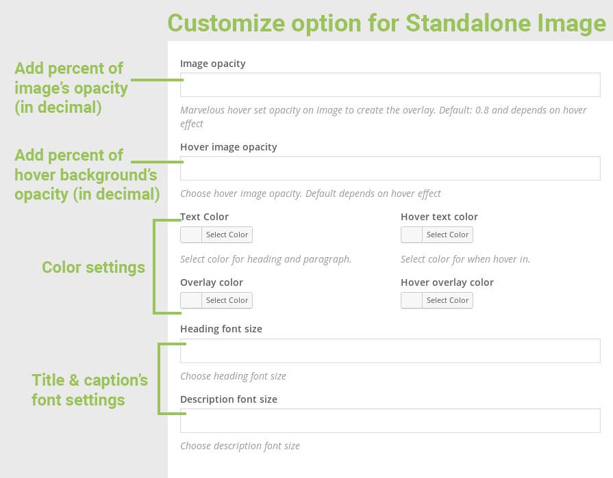 single-customize.jpg