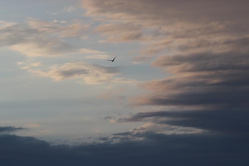 Solo tra le nuvole.  di auriX