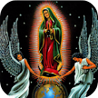 Oración A La Virgen De Guadalupe APK