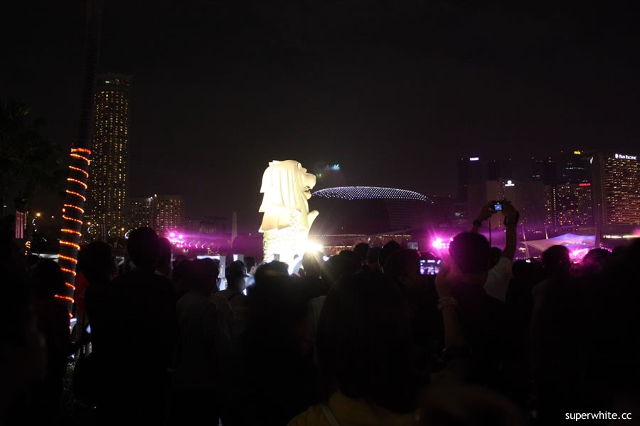 Merlion Park Countdown
