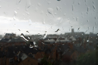 Photo: August 1st (wet day)