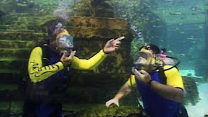 Atlantis: Lost and Found thumbnail
