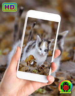 Cute Animals Wallpaper (HD) for PC-Windows 7,8,10 and Mac apk screenshot 2