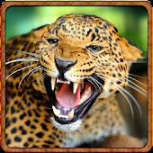 Life of Cheetah Simulator 3D