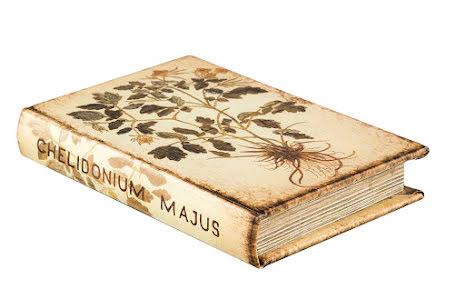 Bokgömma Flora