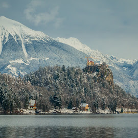 by Mario Horvat - City,  Street & Park  Vistas ( water, church, lake, travel, jezero, island, sneg, winter, touristic, slovenija, slovenia, snow, bled, castle )