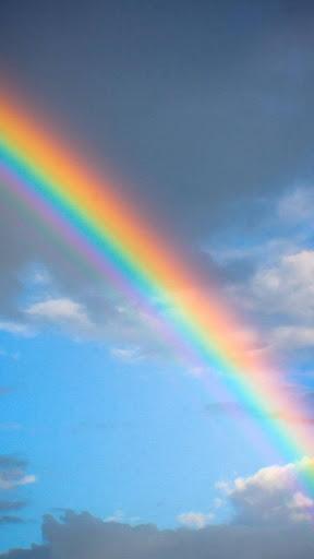 彩虹 ライブ壁紙