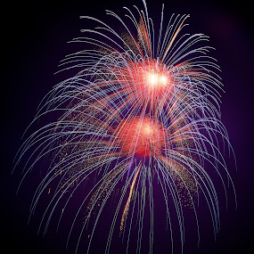 Freedom by Renata Apanaviciene - Public Holidays July 4th ( 4, art, amazing fire, fireworks, nice, july, light )