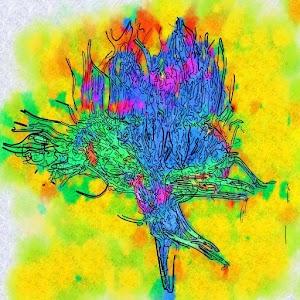 Γνωσιακή Βάση Νευρολογίας