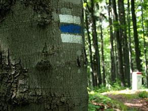 Photo: Niebieski - szlak dostarczający dużo endorfin.