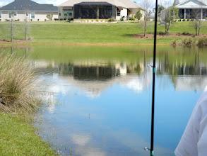 Photo: Ardson Pond, 1:41 pm, Looks good