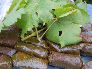 Photo: feuille de vigne