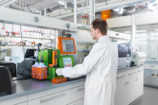 Study Discovers Specialized Mammalian Odorant Receptor for Key Food Smells