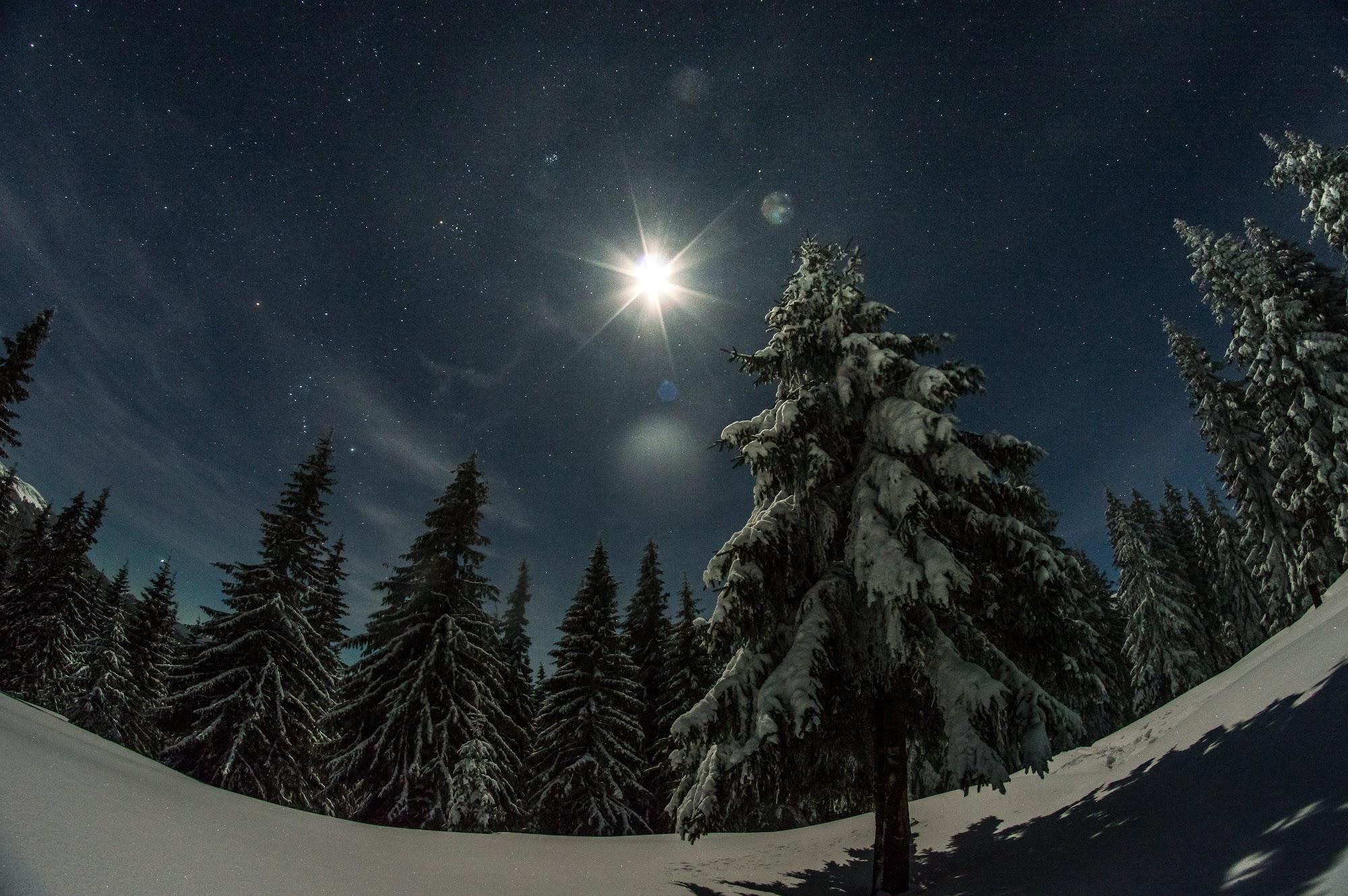Зоряне небо в Горганах