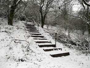 Photo: The South Steps With Snow