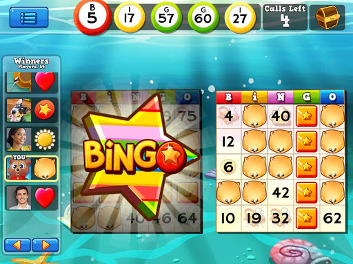 Bingo Pop 4.5.55 screenshots 11