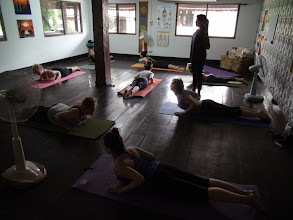 Photo: Participants performing the snake pose in the morning Asana class.