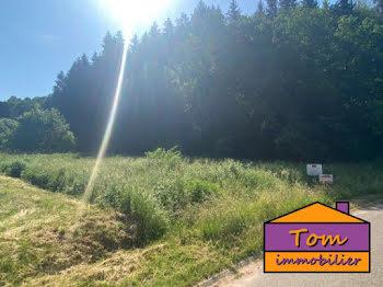 terrain à batir à Lambach (57)