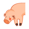 Pig Breeder