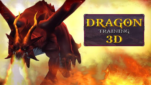 Dragon Training 3D