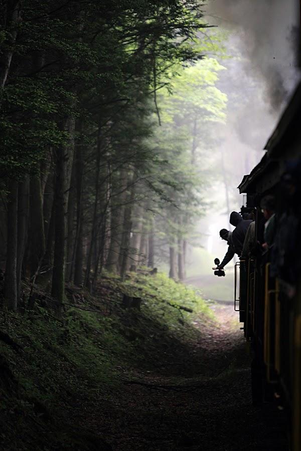 Train Ride by Chuck  Gordon  - Transportation Trains ( train )
