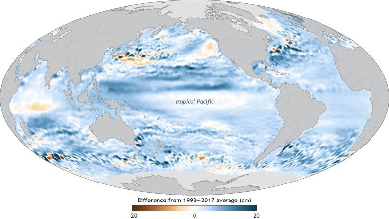 map of global sea level in 2017 compared to the long-term average, with positive anomalies in blue and negative anomalies in brown