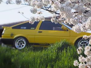 スプリンタートレノ AE86のカスタム事例画像 よっしーさんの2018年03月28日16:38の投稿