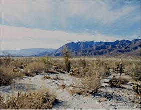 Photo: Anza Borrego Desert
