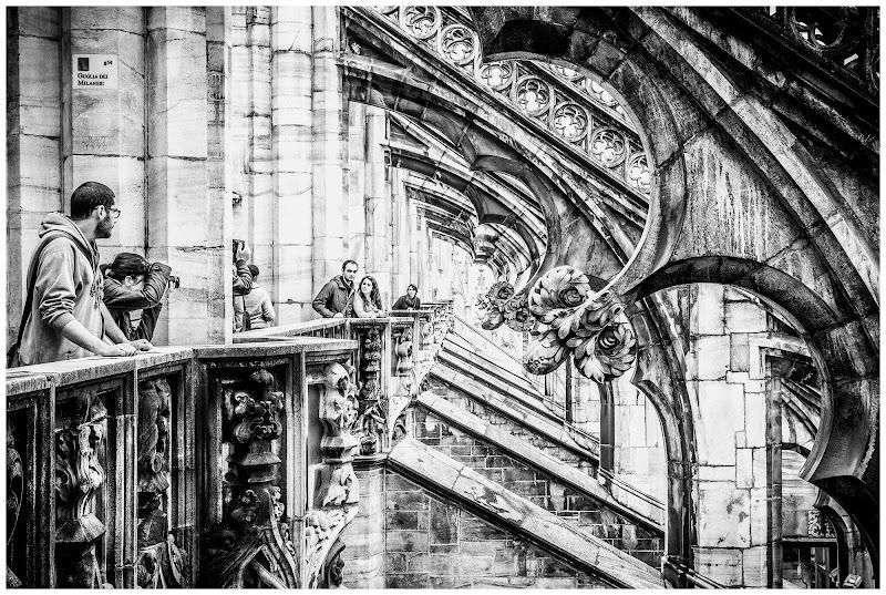 Duomo di Milano, dettaglio di E l i s a E n n E