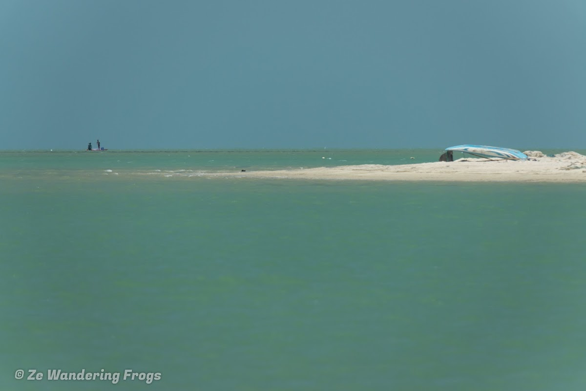 Sri. Lanka Mannar Kiteboarding. We did say the water was turquoise.