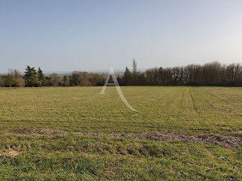 terrain à Alligny-Cosne (58)