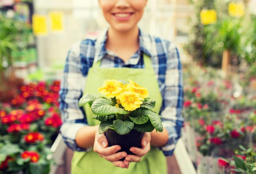 A person holding a bouquet of flowers  Description automatically generated