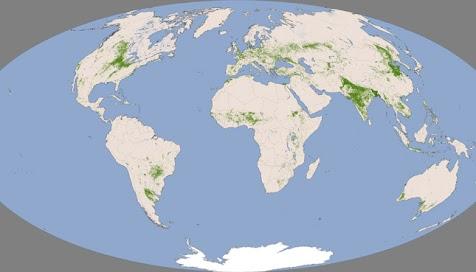A NASA Terra műholdjának MODIS egységének 2000-2008-as adataiból összeállított térképen zölddel jelezték a termőföldeket és szürkével az egyéb térségeket.