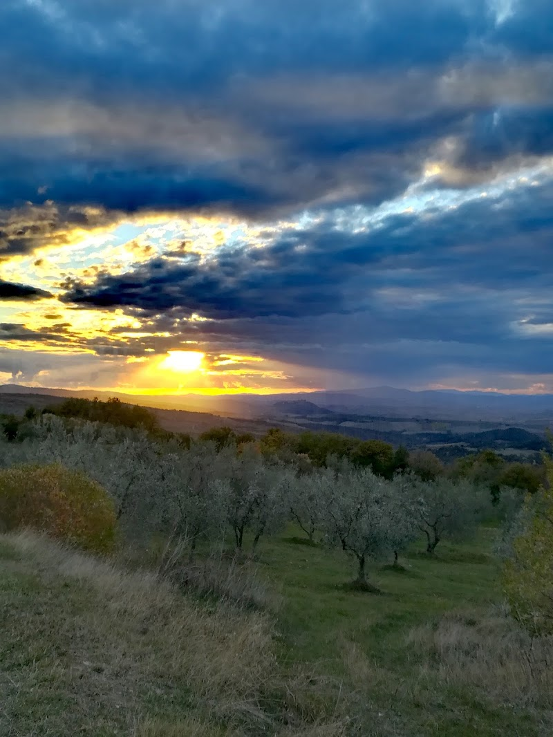 Meraviglia Amiata/Maremma di Giuseppe Lucci