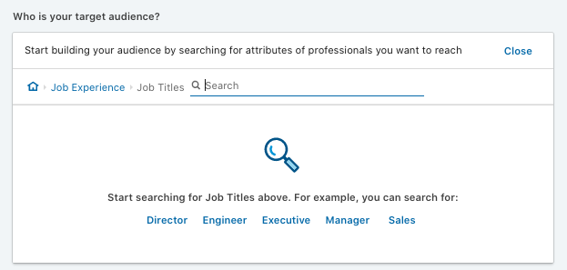 LinkedIn ad targeting audience tool.