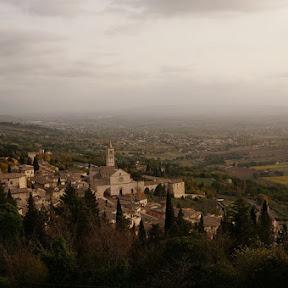 スローツーリズムの聖地 イタリア、アッシジの葡萄畑を歩く
