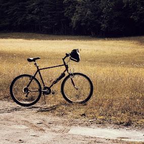 by Brook Kornegay - Transportation Bicycles (  )