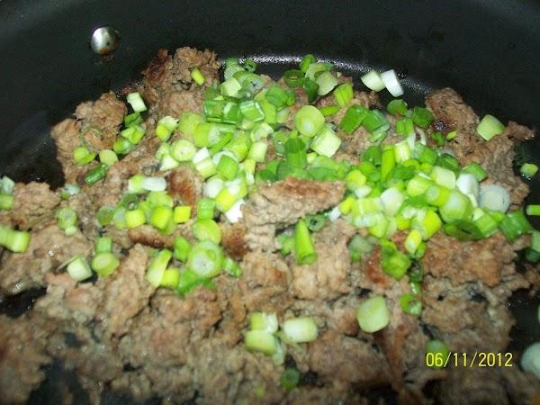 Add the green onions, cole slaw mix, mustard, onion, tomatoes, salt, pepper, light brown...