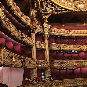 Opera Garnier interior, Paris by Pam Blackstone - Buildings & Architecture Public & Historical ( paris, red, paris opera, opera, gold, opera garnier,  )